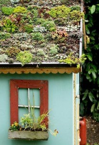 charming green roof